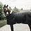 Thumbnail: Kentucky Stable rug