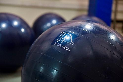 Blue Hors Treningsball