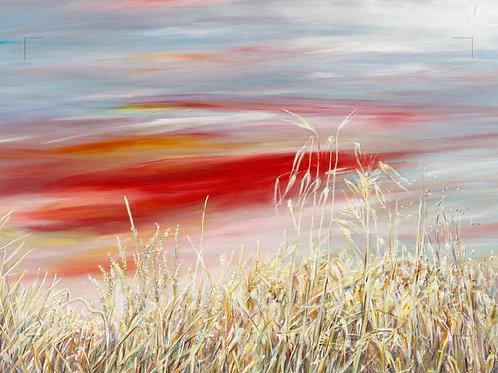 A bright sunset summer field _ 008_ 100x150 cm