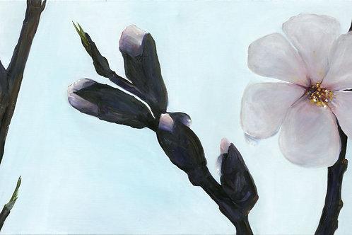 Almond flowers _022 140X40 cm