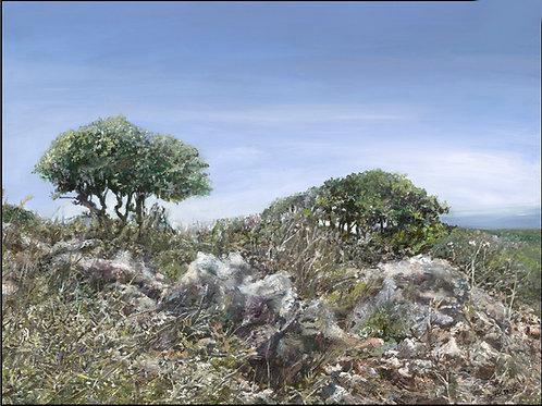 Galilei Landscape_27a 90X120 cm