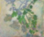 nurit shany - A shadow on the wall, multi media, 2007