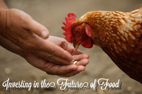 """Investing in the Future of Food (Part 3 - When """"Chickens"""" Fly)"""