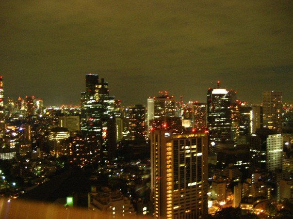 View from Tokyo Tower