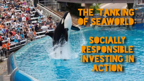 """The """"Tanking"""" of SeaWorld (SEAS): Socially Responsible Investing in Action"""