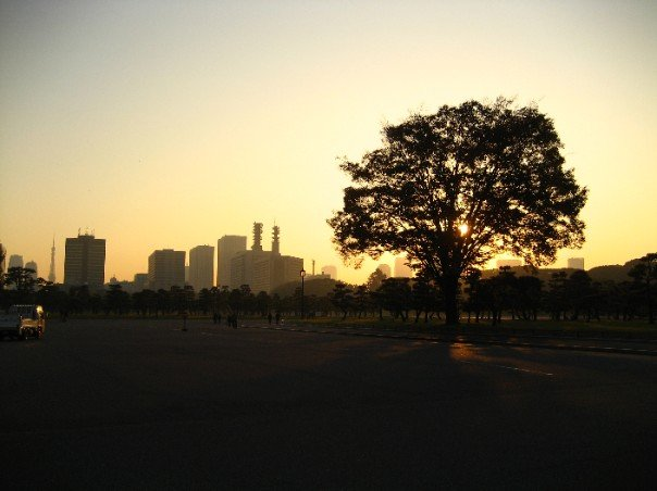 Downtown at Sunset