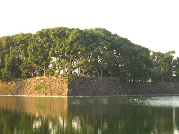 the moat surrounding the Imperial Palace gardens
