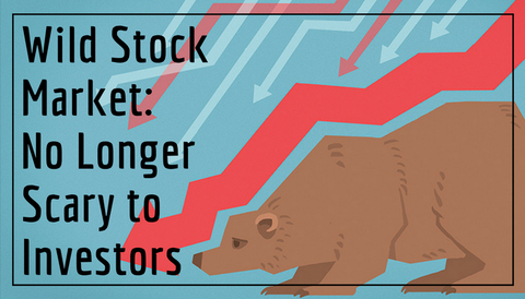 Wild Stock Market: No Longer Scary to Investors
