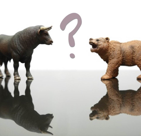 What's the Deal with Bears and Bulls?