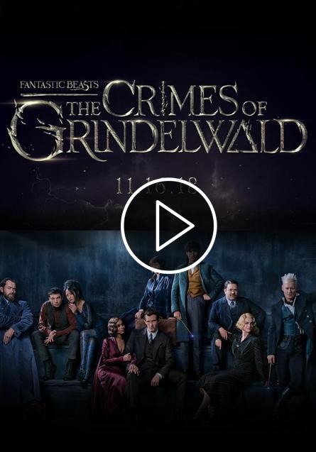 LOS CRIMENES DE GRINDERWALD