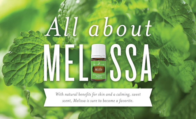 All about Melissa