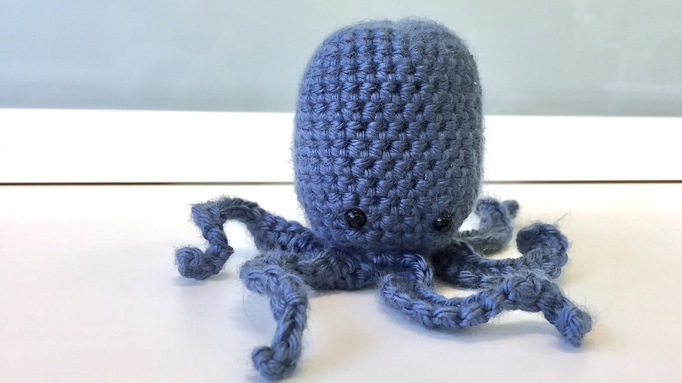 Small 6 Tentacle Octopus