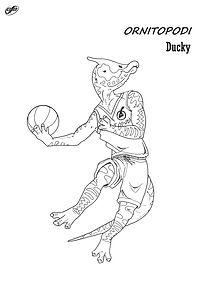 basketducky.jpg