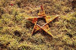 Deeside Willow - Craft Star
