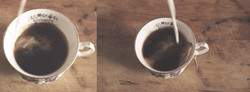 Tea & Milk