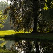Potsdam-ParkSansSouci