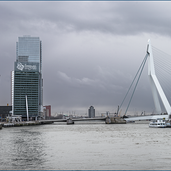 Rotterdam-Erasmusbrug8224.png