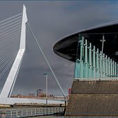 Rotterdam-Erasmusbrug-8182.png
