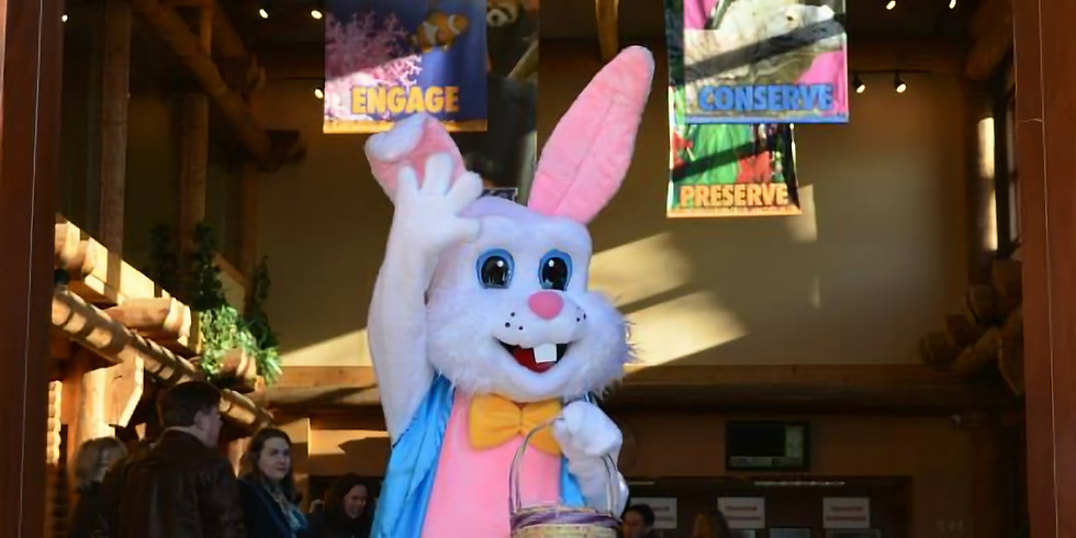 Easter Bunny Drive-thru