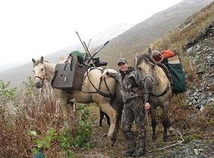 Alaska Pack Service