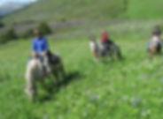 Custom Alaska Horseback Tours