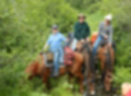 Johnson Lake Alaska Horseback Trip