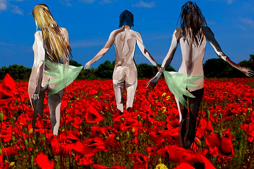 """""""Sometimes I just want to walk through my red flower field with you"""""""