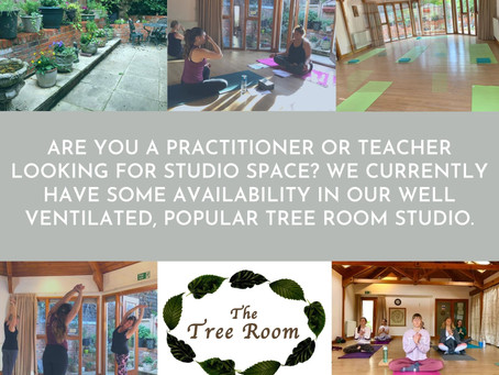 The Tree Room Studio - a popular, tranquil space available to hire...