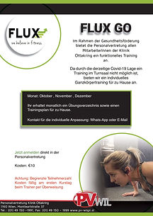 Flyer Flux_groß-1.jpg