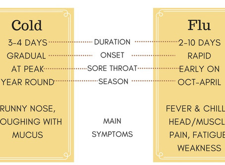 Cold & Flu Season: The Basics