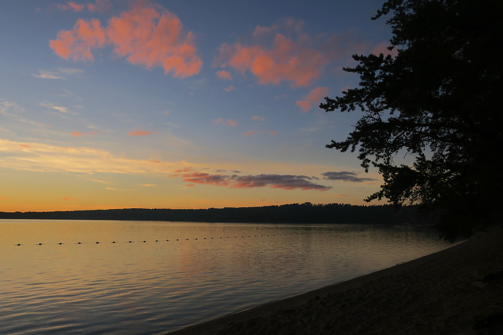 Image of a lake, from the sand, with a tree silhouette and a blue/orange/pink sunset on the horizon