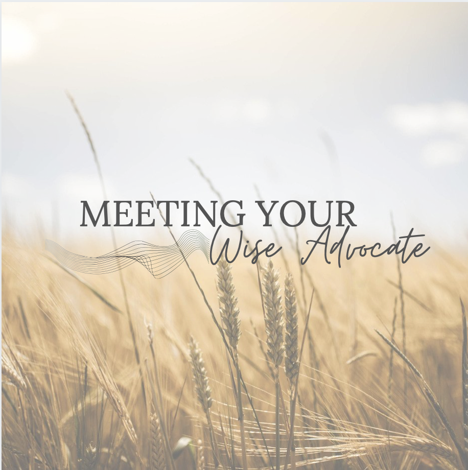 """Image of a field of wheat with black letters overlay saying """"Meeting your wise advocate"""""""
