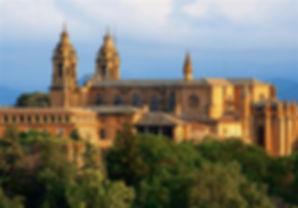 Pamplona milenario city
