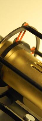 micro dorado pp.JPG