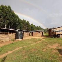 farm with rainbow.jpg