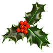 holly-transparent-background.png