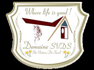 Domain_SVDS_final-01.png