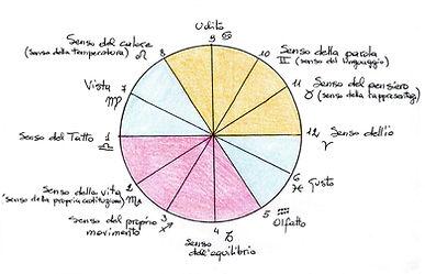 12 sensi da Claudia Gasparini.jpg