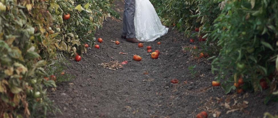 Wedding Planning tutorial