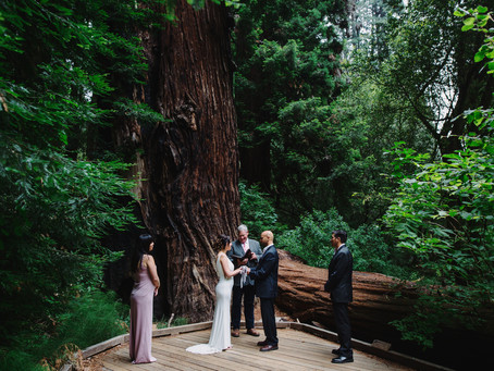 Muir Woods & Muir Beach, SF elopement