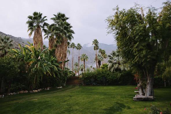 Palm Springs Photographers128.jpg