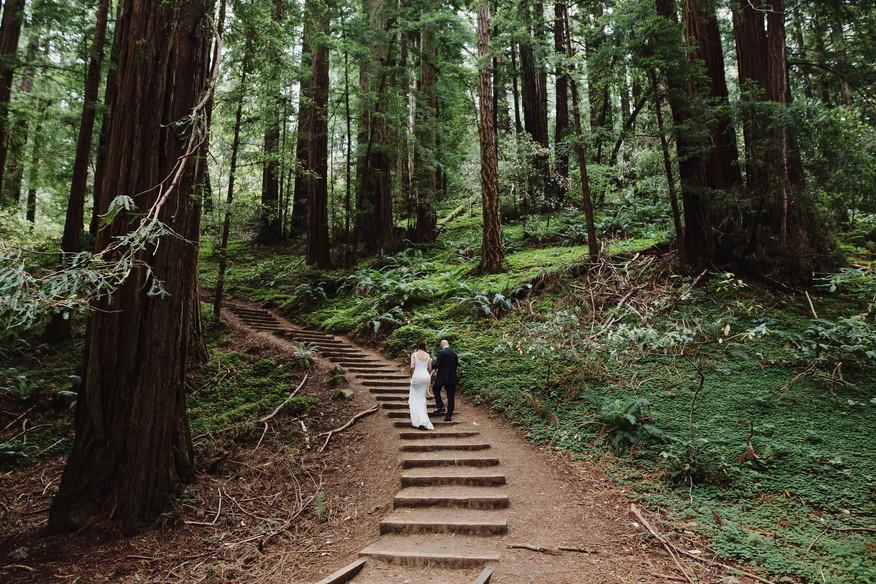 Muir Woods - Elopement
