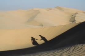 Dunes Engagement-1.jpg