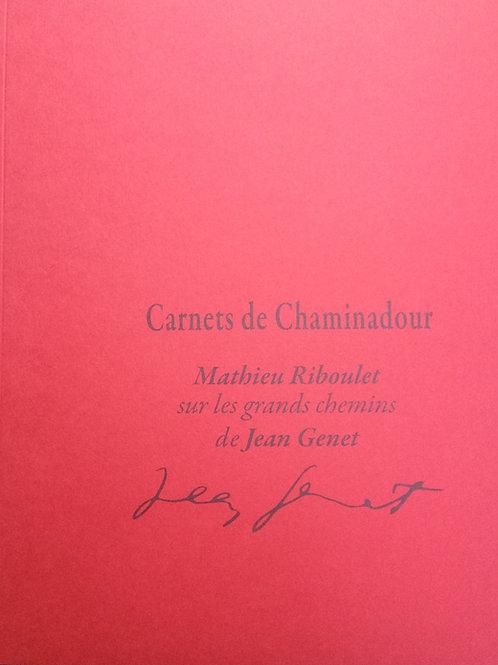 N° 14 : Mathieu Riboulet / Jean Genet