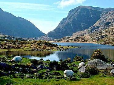 Killarney National Park.jpg