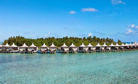 Paradise Island.jpeg