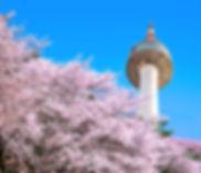 N Seoul Tower.jpg