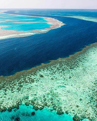 Great Barrier Reef.jpg