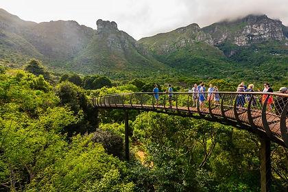 Kirstenbosch Botanical Gardens.jpg