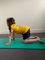 Cow pose - to mobilise the spine